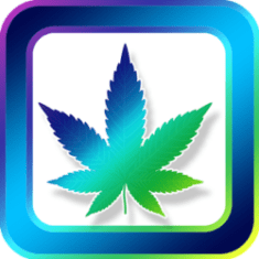 Marijuana Testing in Texas by Armstrong Forensic Laboratory. Inc.